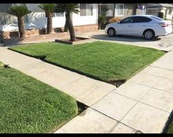 Photo #4: GREEN GROW Lawn, Yard and Tree Services
