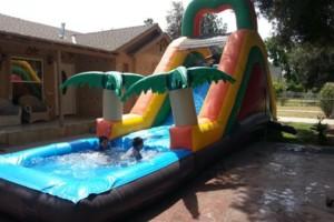 Photo #1: Daisy's Party Rental