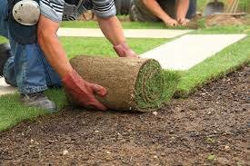 Photo #2: Lawn maintenance services. Spring and fall cleanups. Fertilization