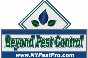 Photo #9: Manhattan's #1 Pest Control Extermination!