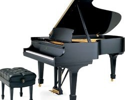 Photo #1: Pro Piano -  rent, lease, sell & service pianos