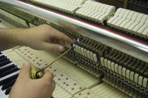 Photo #1: Sudhira Hay, Piano Tuner & Technician