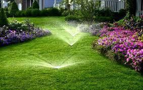 Photo #2: Spring Yard Clean-ups, Power Raking, Aeration...