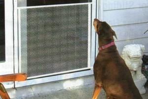 Photo #2: MOBILE WINDOW SCREEN SERVICE