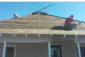 Photo #8: Hugo's Roofing crew
