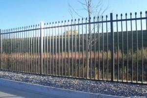 Photo #5: All Access Fence. Professional Fence & Pergola Installation