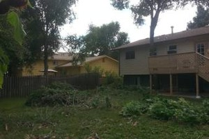 Photo #16: TREE & BRUSH REMOVAL, HAULING, FIREWOOD, RENTAL CLEANOUTS