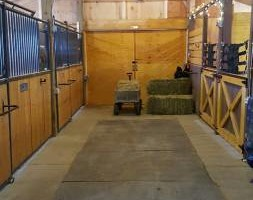Photo #2: Full Care Horse Boarding-Private Stable