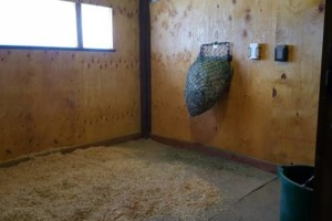 Photo #3: Full Care Horse Boarding-Private Stable