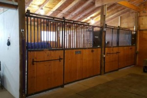 Photo #4: Full Care Horse Boarding-Private Stable