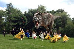 Photo #1: WEDDING PHOTOGRAPHER - Smaller Ceremonies to Event Size Weddings!!!