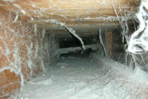 Photo #5: Fresh N Clean. VENT DUCT CLEANING!!!