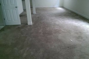 Photo #5: Elite Eco Solutions. Carpet and Upholstery Cleaning