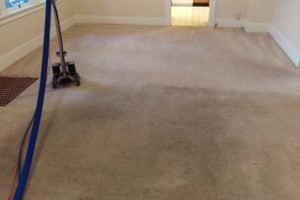 Photo #2: Elite Eco Solutions. Carpet and Upholstery Cleaning