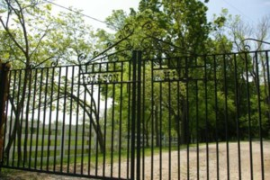 Photo #10: Iron Fence Fabrication and Installation