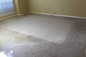 Photo #7: Flores Carpet Cleaning - carpet, tile, upholstery, and auto upholstery cleaning