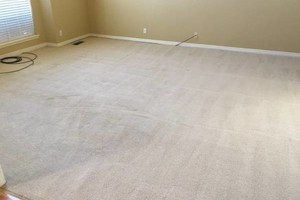 Photo #8: Flores Carpet Cleaning - carpet, tile, upholstery, and auto upholstery cleaning