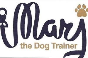 Photo #1: Dog Training that WORKS!