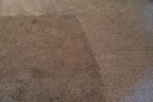 Photo #2: Advance Carpet Cleaning - 3rms$75, 4rms$100