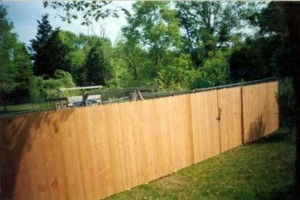 Photo #11: D-Fence (Fence, Decks & More)