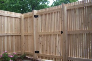 Photo #5: D-Fence (Fence, Decks & More)