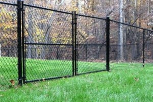 Photo #4: D-Fence (Fence, Decks & More)