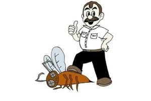 Photo #1: JimmyBugs Pest Control