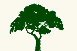 Photo #1: Sequoia Outdoor Services. Lawn & Tree Care