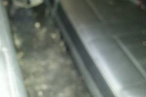 Photo #7: Diamond Shined Car Detail
