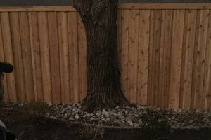 Photo #2: Warner Fence and Tree Services