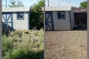 Photo #4: Weeds be gone! Yard cleaning