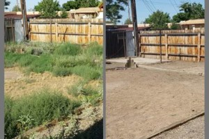 Photo #2: Weeds be gone! Yard cleaning