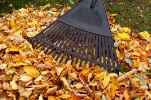 Photo #1: RESIDENTIAL & COMMERCIAL GROUND MAINTENANCE SERVICES...