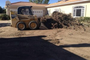Photo #5: Bobcat services & more