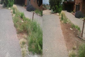 Photo #10: YARD CLEANING AND MAINTENANCE $20 HOUR
