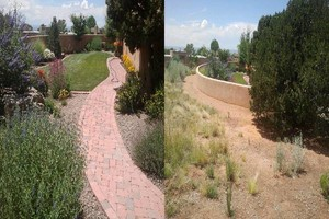 Photo #9: YARD CLEANING AND MAINTENANCE $20 HOUR