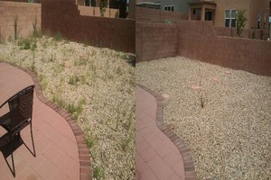 Photo #8: YARD CLEANING AND MAINTENANCE $20 HOUR