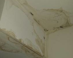 Photo #4: Handy Man Services - ATTICS, DOORS, SINK/TUB REPAIR...