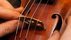 Photo #2: Santiago Violin Setup, Repair & Restoration Service
