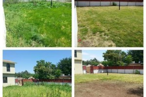 Photo #6: Yard clean up - $35 and up