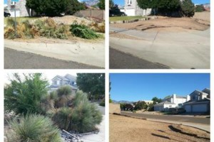 Photo #1: Yard clean up - $35 and up