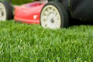 Photo #1: Cutter's Edge Lawn Care