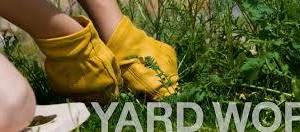 Photo #3: Yard work - clean yard trash/ cutting grass