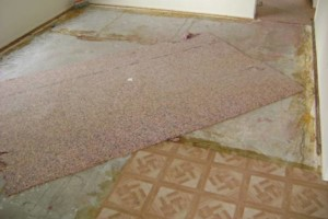 Photo #8: Carpet Installer Lannie. 20yrs exp!