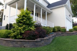 Photo #6: MATEOS LANDSCAPING! FREE ESTIMATES!