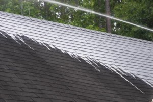 Photo #4: Apex Soft House Washing &  Roof/Gutter Cleaning