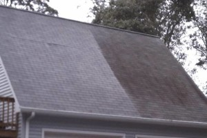 Photo #12: Apex Soft House Washing &  Roof/Gutter Cleaning