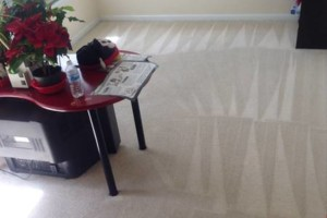 Photo #10: Carpet Cleaning Special $99 for FIVE ROOMS! Encore Carpet Care