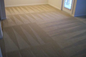 Photo #9: Carpet Cleaning Special $99 for FIVE ROOMS! Encore Carpet Care