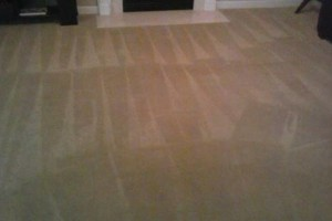 Photo #7: Carpet Cleaning Special $99 for FIVE ROOMS! Encore Carpet Care